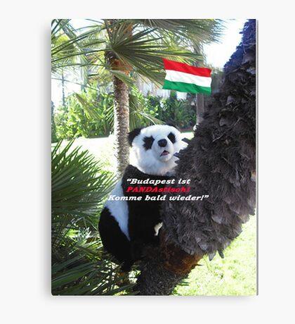 Ihr spezielles Panda Souvenir direkt aus Budapest, Ungarn! Canvas Print