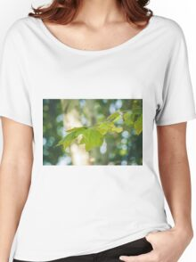 050 - Trees Women's Relaxed Fit T-Shirt