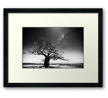 Dinner tree constellations Framed Print