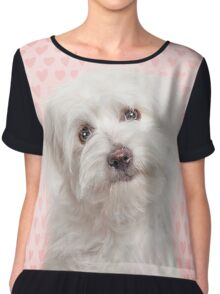 Pink love hearts and Coton de Tulear Dog Chiffon Top