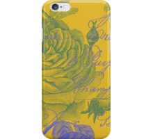 Paris Poetry iPhone Case/Skin