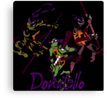 3 X Donatello Canvas Print