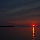 Good Night Mork - In Memory Of Robin McLaurin Williams ©  by © Hany G. Jadaa © Prince John Photography
