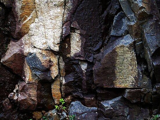 Rocks ! by Elfriede Fulda