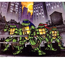 Teenage Mutant Ninja Turtles Photographic Print