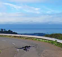 Crow at Twin Peaks by David Denny