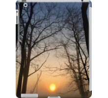 Stillness Stays iPad Case/Skin
