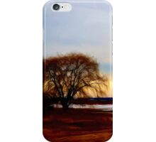 Willow at Sunset iPhone Case/Skin
