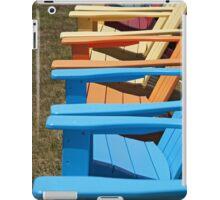 Adirondack Rainbow iPad Case/Skin