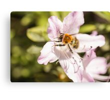 I will bee there Canvas Print