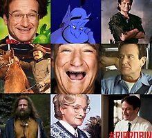 Robin Williams Collage by jensina