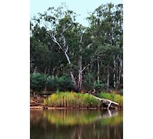 Reedy Reef on The Murray River By Lorraine McCarthy Photographic Print
