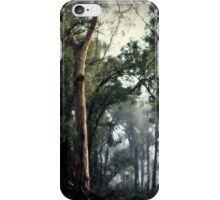 Winter's Whisp By Lorraine McCarthy iPhone Case/Skin
