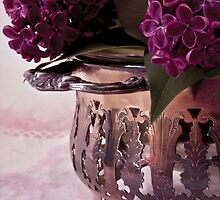 Lilac And Silver  by Sandra Foster