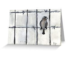 Bird (On A Barbed) Wire Greeting Card