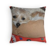 """It's cold out there - I think I'll stay here thank you"" Throw Pillow"