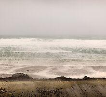 The wild Irish west coast by Kevin Hayden Paris