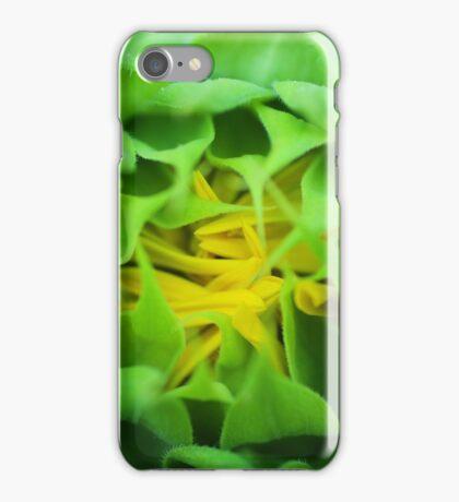 Sunflower Bud 1 iPhone Case/Skin