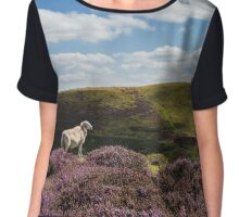 Hill Sheep Chiffon Top
