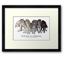 WINTER IS COMING- House Stark Direwolves Framed Print