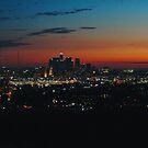 West coast sunset by Santamariaa