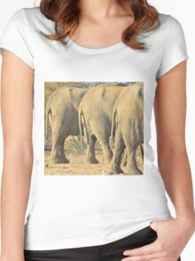 Elephant Diet Clinic - Funny African Wildlife Women's Fitted Scoop T-Shirt