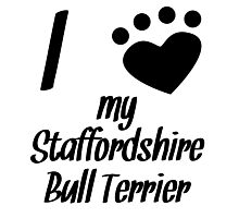 I Heart My Staffordshire Bull Terrier Photographic Print