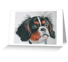 Sandy - King Charles Spaniel Tri Color Greeting Card