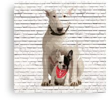 English Bull Terrier & Frenchie Friend Banksy Style Canvas Print