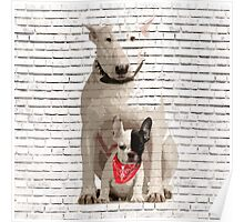 English Bull Terrier & Frenchie Friend Banksy Style Poster