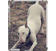 Wanna Play iPad Case/Skin