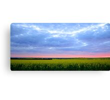 Thin pink line Canvas Print