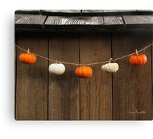 String of Pumpkins Canvas Print