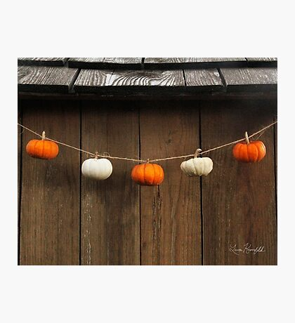 String of Pumpkins Photographic Print