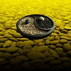 Yinyang Series - Lemon by Keith Richardson
