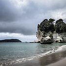 Cathedral Cove beach by DebbyScott