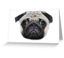Pug Floating Head Greeting Card