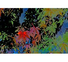 Abstract 101 Photographic Print
