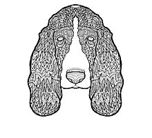 Basset Hound - Detailed Dogs - Illustration Photographic Print