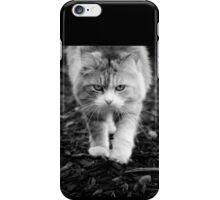 catwalk iPhone Case/Skin