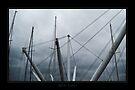 The pylons of Bigo by Roberta Angiolani