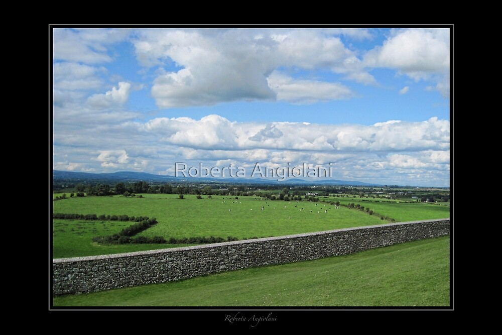 View from Rock of Cashel by Roberta Angiolani