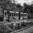Ashdon Halt by Nigel Bangert