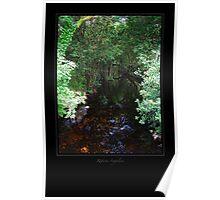 Water Canal (Glendalough) Poster