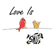 Love Is Bird Shit. Photographic Print