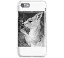 Kangaroo iPhone Case/Skin