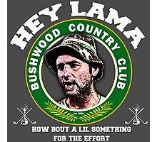 Hey Lama how bout a lil something for the effort Photographic Print