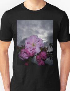 CHERRY BLOSSOM MACRO AGAINST STORMY SPRING SKY Unisex T-Shirt
