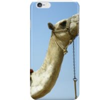 Colorful Camel iPhone Case/Skin
