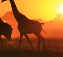 Giraffe - Sunset Gold and Harmony - African Wildlife Sticker